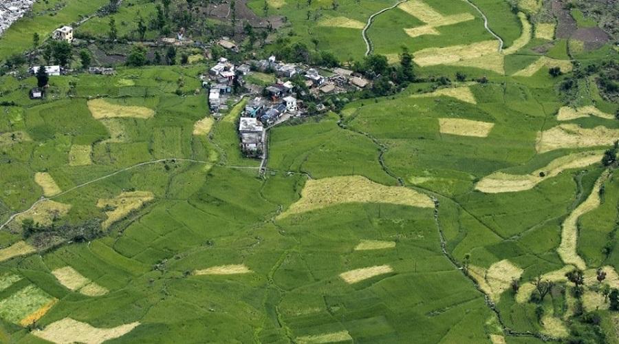 Village Mandal, Uttarakhand