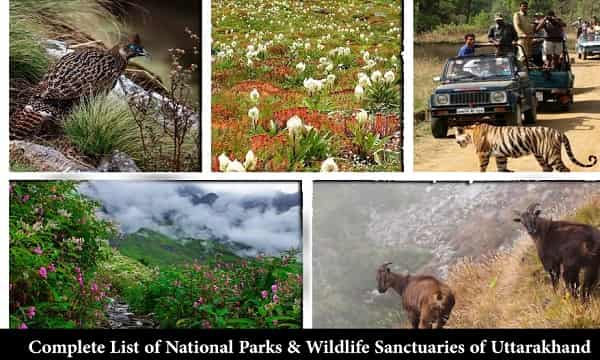 Complete List of National Parks & Wildlife Sanctuaries of Uttarakhand